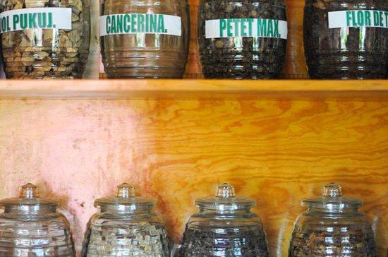 Mayan Medicine and Shamanic...