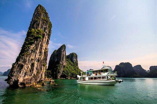 Excursion d'une journée dans la baie d'Halong : Luxury Halong Bay Day Tour