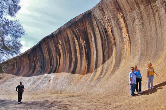 Wave Rock & Rottnest Island...