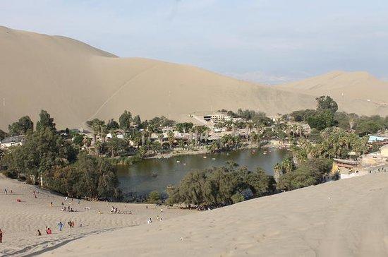 Ballestas, Nazca Lines & Huacachina...