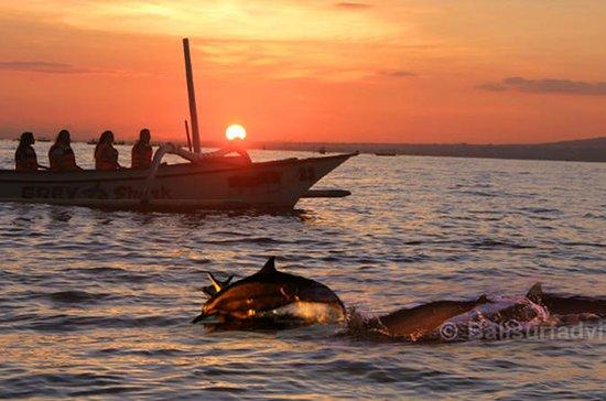 Tour privado 2 días una noche Ver delfines-otros varios hermosos objetos turísticos: Cosmo Tours 2 days 1 night: Lovina Dolphin, Gitgit Waterfall, and 6 other places