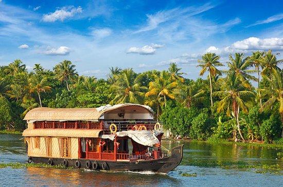 Excursión de 5 días a Kerala (casa...