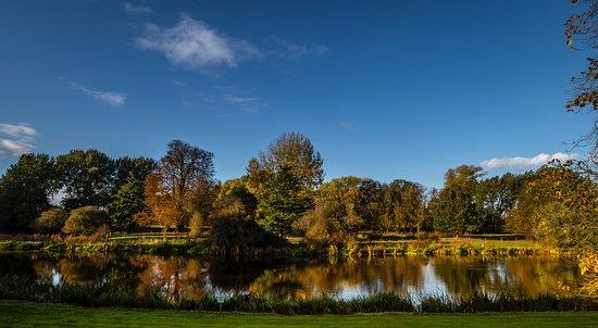 Thrumpton, UK: Lakeside view