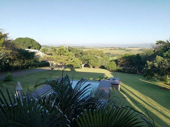 Bilde fra Mtunzini