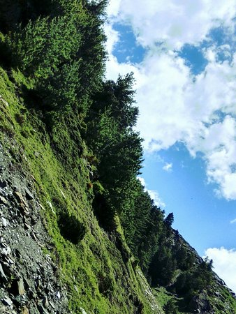 This place is in kugti of Himachal Pradesh