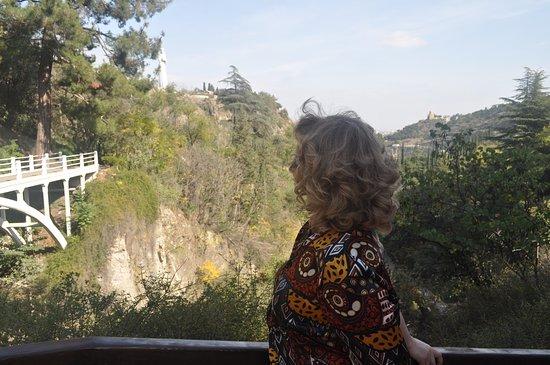 Tiflis, Georgia: Вид от беседки сада восхитительный!