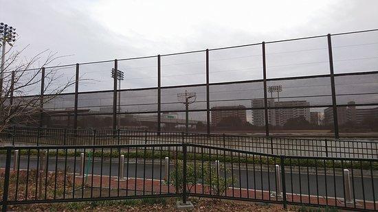 Koto Sports Tide Baseball Field, Tennis Field: テニスコート