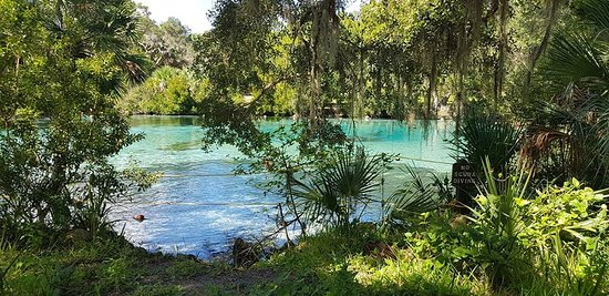 Salt Springs, FL: Vista externa
