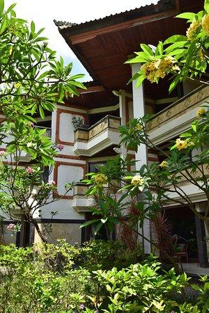 Bali-Wing
