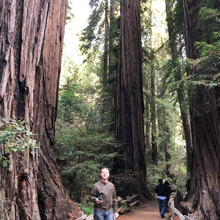 Extranomical Tours San Francisco 2019 All You Need To Know Before You Go With Photos Tripadvisor