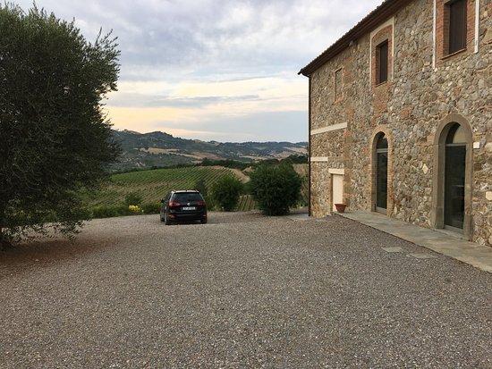Cinigiano Picture