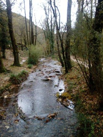 Bilde fra Serra Sant'Abbondio