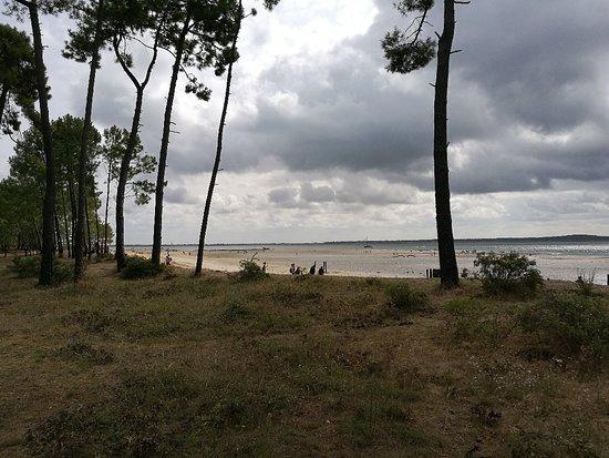 Île d'Oléron Photo