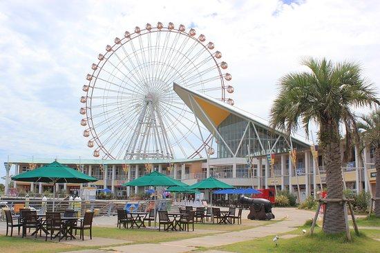 Laguna Festival Market