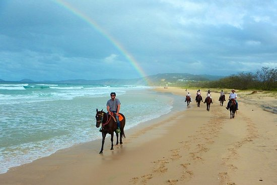 Rainbow Beach Horse Ride