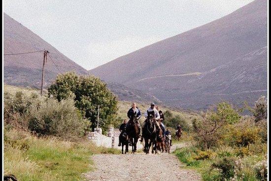Hesteridning utflukter fra Kalamata
