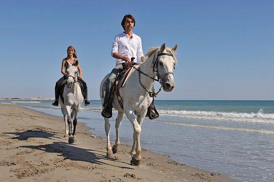 Cavalgada e churrasco na praia em...