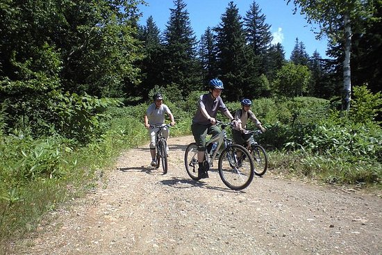 Mountain Bike Tour fra Sapporo...