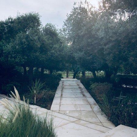 حديقة الشهيد