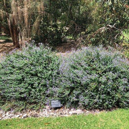George Pentland Botanical Gardens
