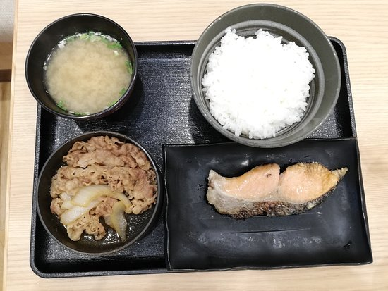 Beef and grilled salmon rice set