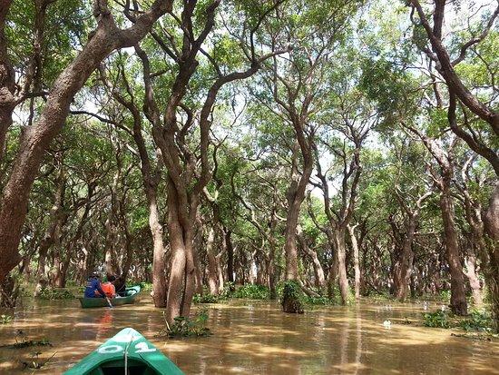 Tonle Sap Canoe tour