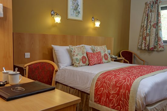 The Sandpiper Hotel, Sure Hotel Collection by Best Western