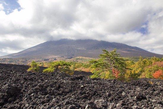 Mt. Iwate Yakehashiri Lava Flow