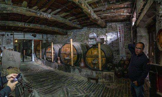 Cellar visit