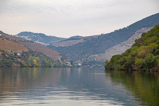 Jorge Barefoot - Wine & Tours: Douro river