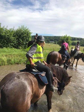Découvrir le Pays d'Auge à cheval