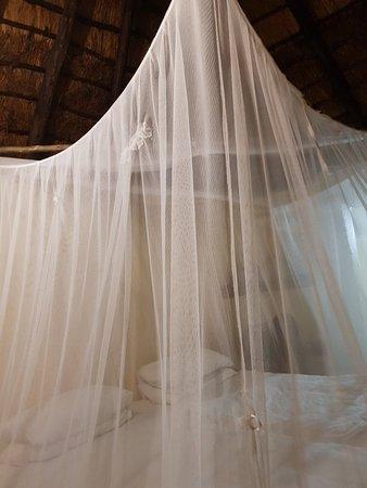 Manyeleti Game Reserve ภาพถ่าย