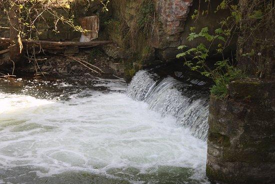 Auberge au Canoe Gourmand: Blick auf das Wasser - von der Terasse aus
