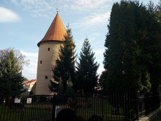 School bastion