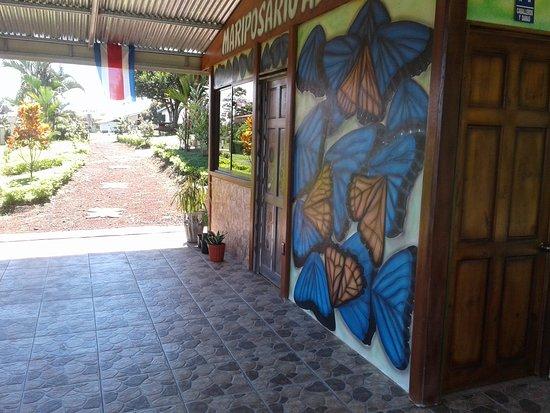 San Carlos, Costa Rica: Exelente lugar