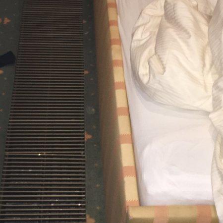Bilde fra Hotel am Schloss