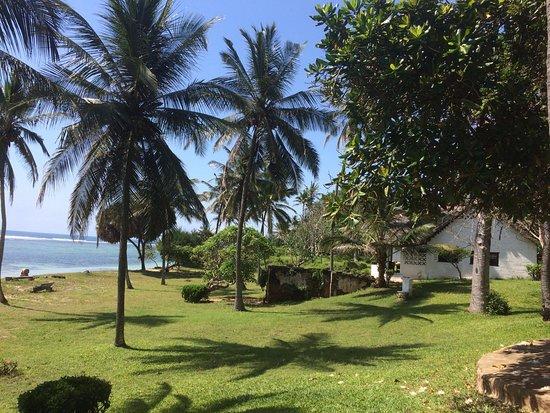 Tiwi ภาพถ่าย