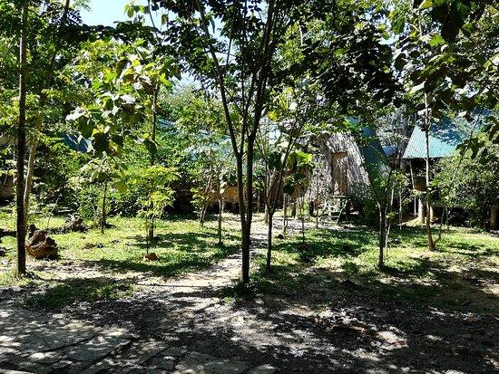 Cat Tien National Park 사진