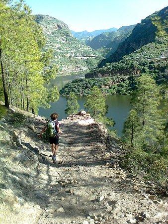 Track & Trail