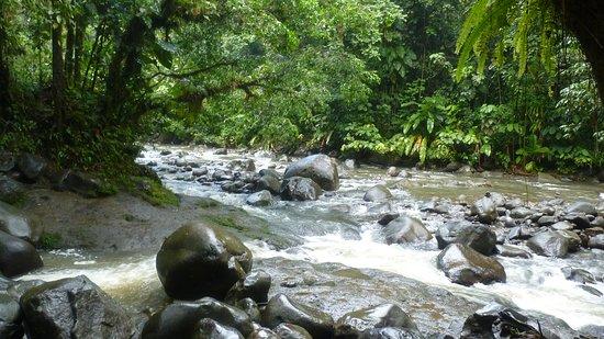 Снимок Парк Национальный