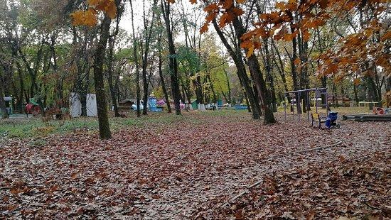 Bozdoshskiy Park