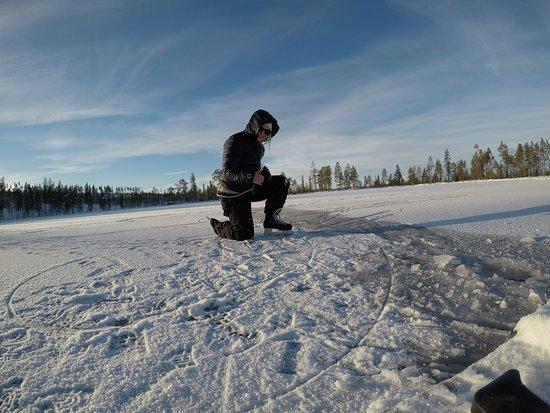 Laplandlife