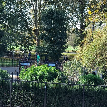 Splendide Park à côté de Buckingham Palace