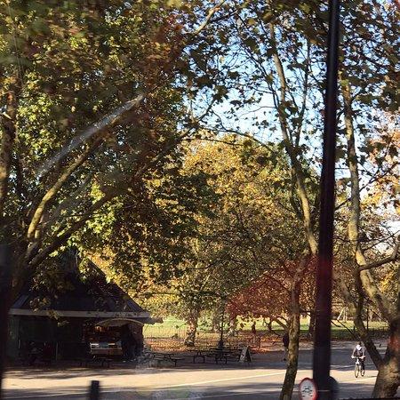 Saint James Park