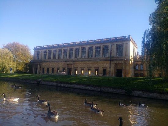 Promenade en barque à Cambridge : View from our punt.