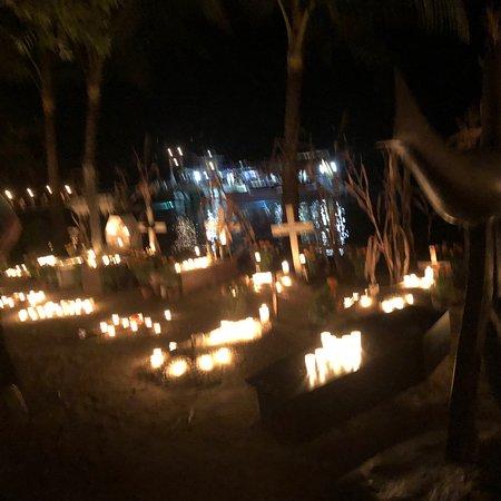 Rhythms of the Night by Vallarta Adventures Photo