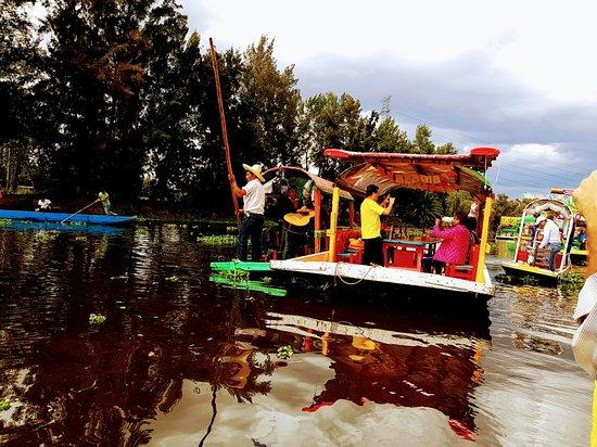 Floating Gardens of Xochimilco Foto