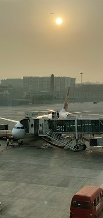 Air india express dammam to calicut booking