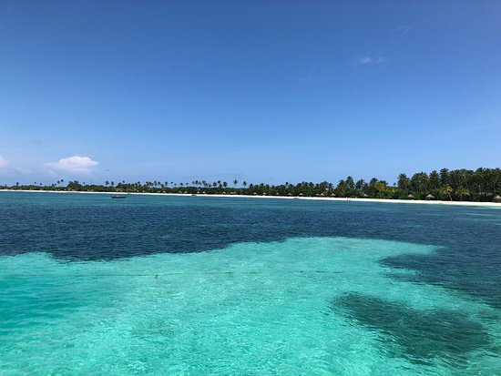 One amazing resort