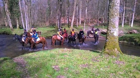 Signy-le-Petit, França: Balade en forêt et passage de rivières avec des chevaux très calmes et dociles.